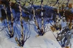 Vinter 5 Akvarell 38x56 cm 4000 ur