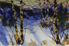 Vinter 8 Akvarell 38x56 cm 4000 ur