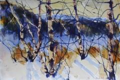 Vinter 9 Akvarell 38x56 cm 4000 ur