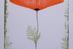 Scarlet Litografi (55x38 cm) kr 3200 ur