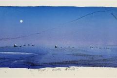 Tur i blaae natta Litografi 13x42 cm 2000 ur