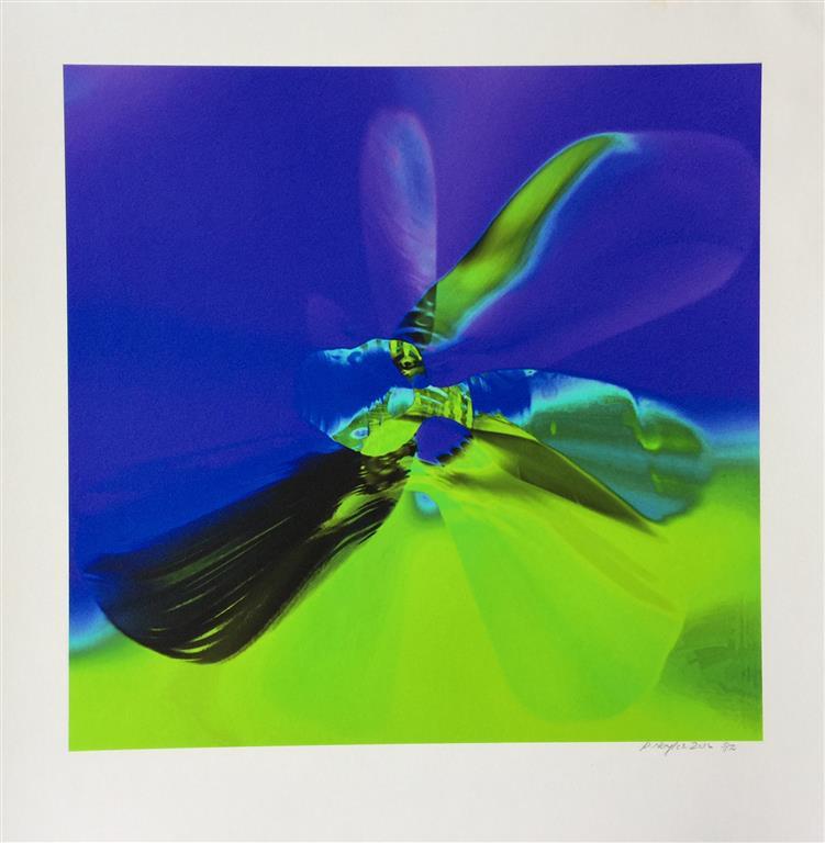 ButterflyEffect grønn Digigrafikk (45x45 cm) kr 4000 ur