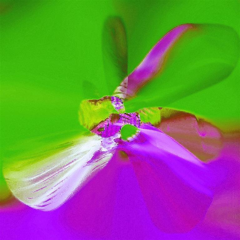 ButterFlyEffect (Green) Digigrafikk 50x50 cm 4000 ur