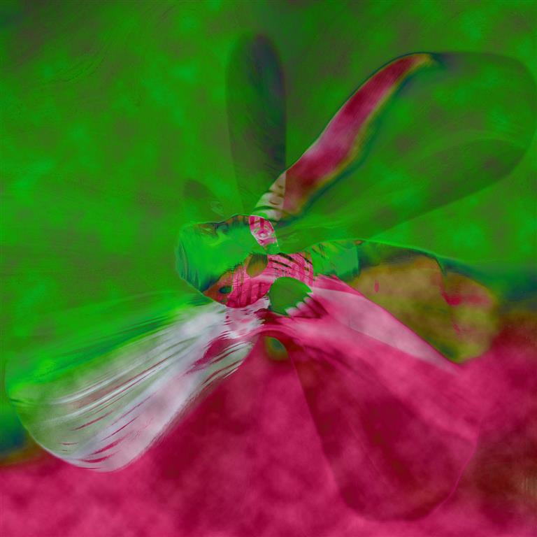 ButterFlyEffect (GreenCloud) Digigrafikk 50x50 cm 4000 ur