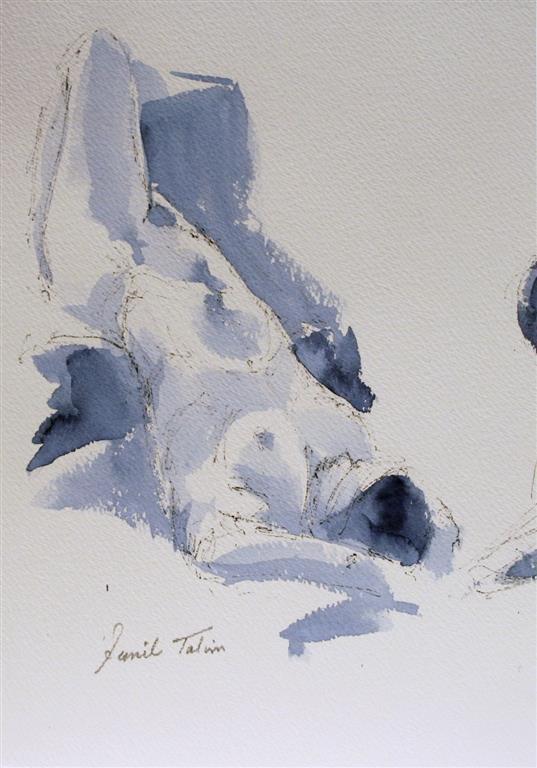 Anna (II), oh what a lady Akvarell (28x19 cm) kr 1400 ur
