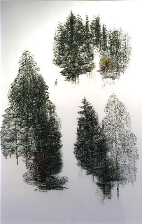 Grete Skoe. Vandrer Tegning_kull (65x42 cm) kr 7900 mr