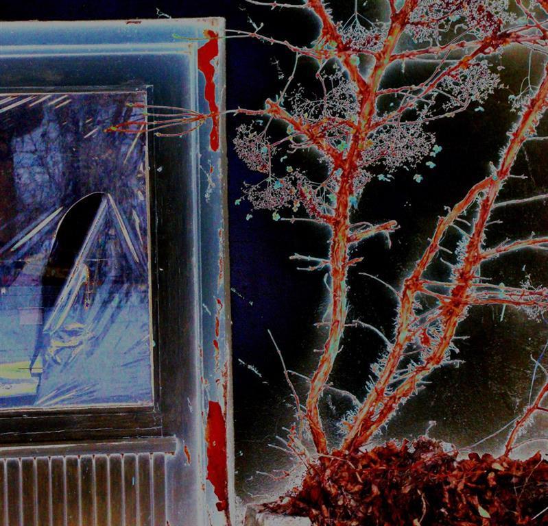 Kjell Vidar Andersen. Ingen hjemme Digiprint (40x40 cm) kr 1400 ur